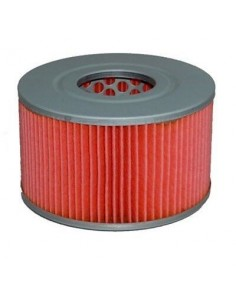 Filtro de aire Hiflofiltro HFA1002
